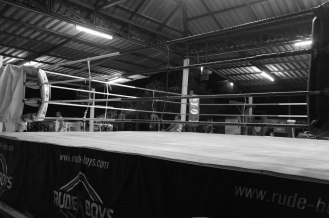 The ring is set, let the match begin!